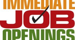 Latest Jobs for Grade 12 Students