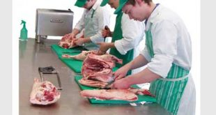 butchery and fresh meet processing job opportunities