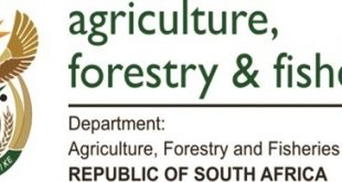 agriculture forestry and fisheries dept bursary award for 2015