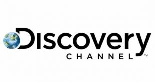 Discovery Graduate Jobs in Gauteng South Africa for Business Analysts