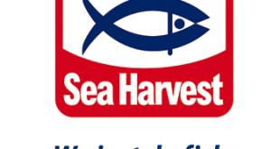 Sea Harvest Careers Jobs Vacancies Internships Graduate Programme