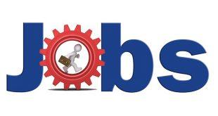 Phezukomkhono Jobs Careers in Municipalities Training Programme