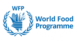 world food programme jobs careers vacancies internships