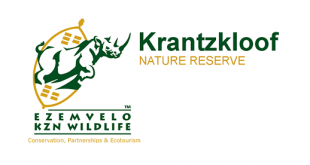 kzn wildlife jobs careers vacancies internships learnerships